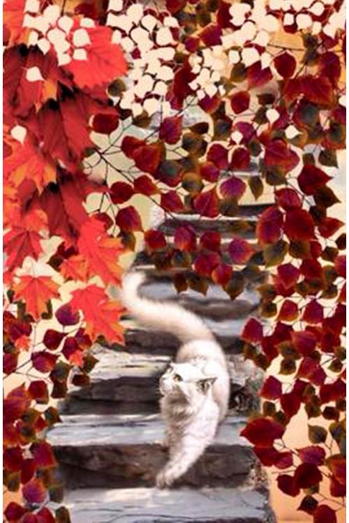 Принт Осенний белый кот