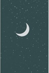 Принт Живая ночь (Луна)
