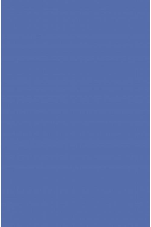 Джинса голубой