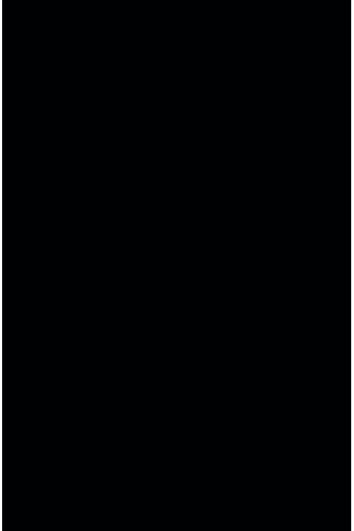 Вискоза черный