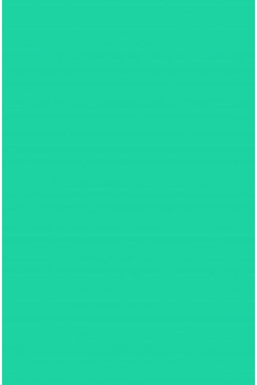 Карибский зеленый (шерсть)