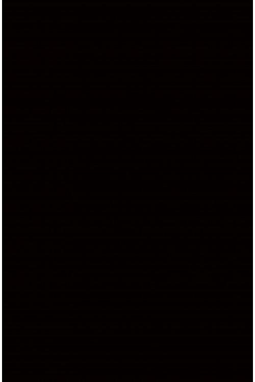 Прак черный