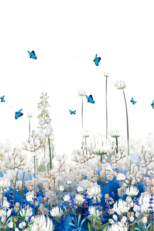 Принт Цветы и бабочки