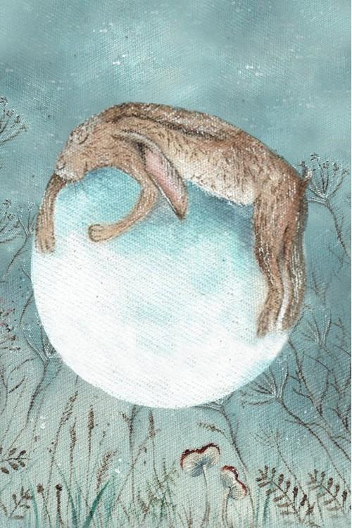 Принт Заяц на луне