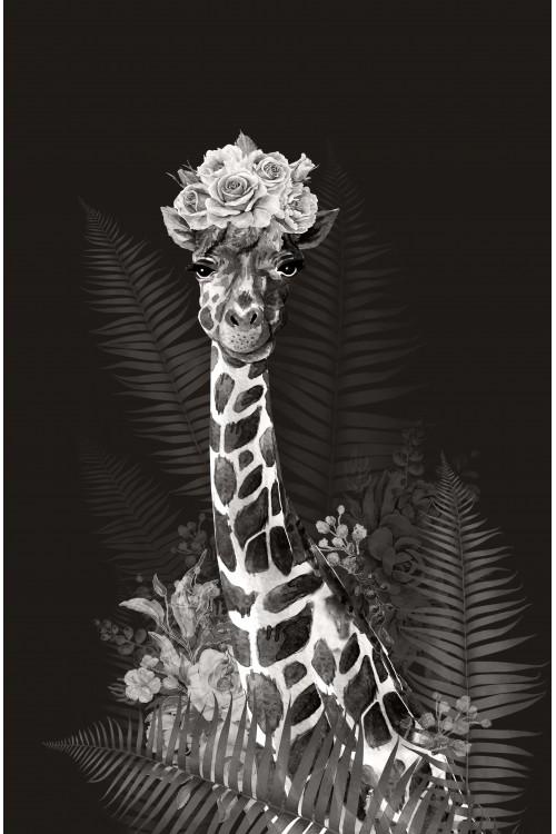 Принт Жираф