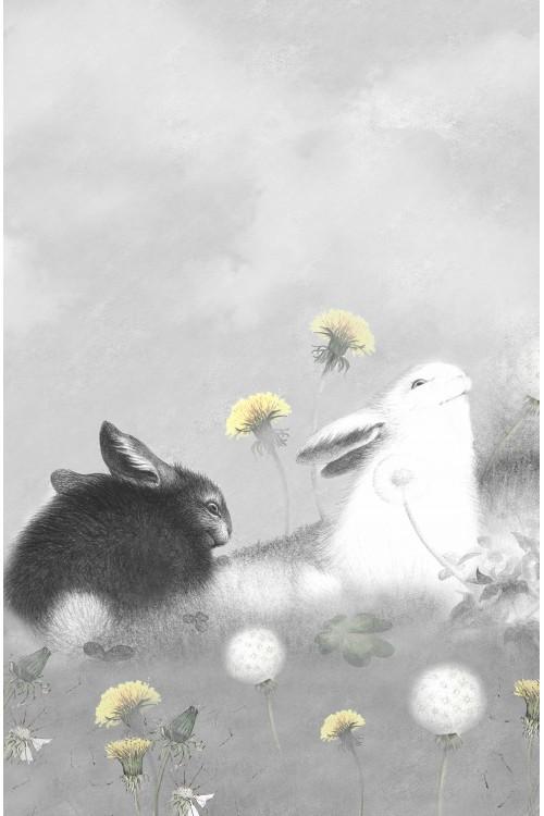 Принт Черный и Белый заяц
