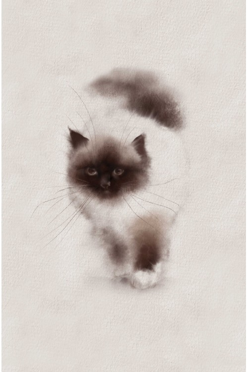 Принт Кошечка мяу