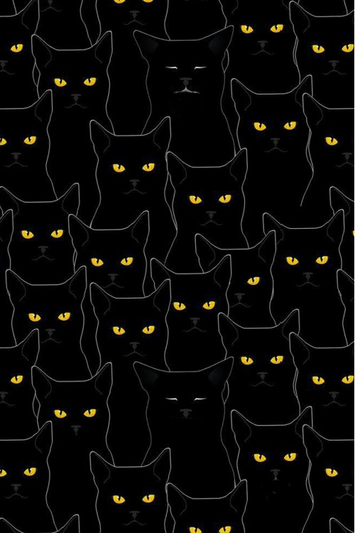 Принт  Черные кошки